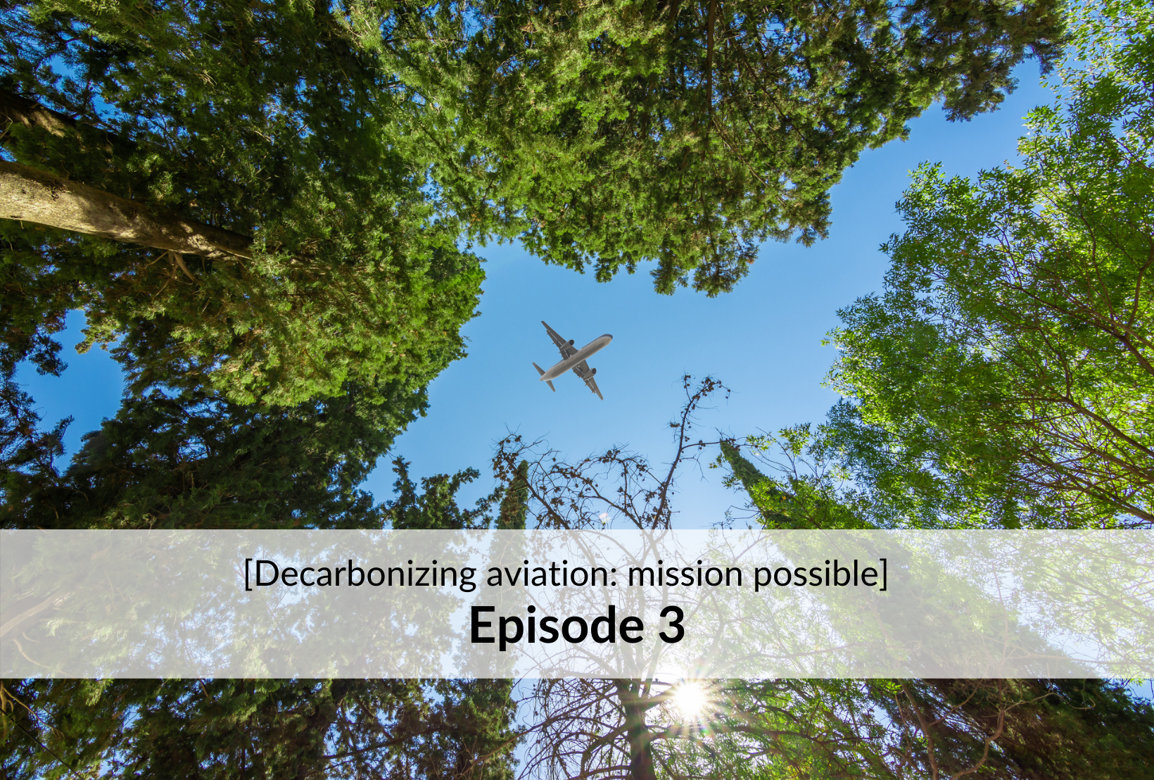 [Decarbonizing aviation: mission possible] - Episode 3: Aviation track record and roadmap