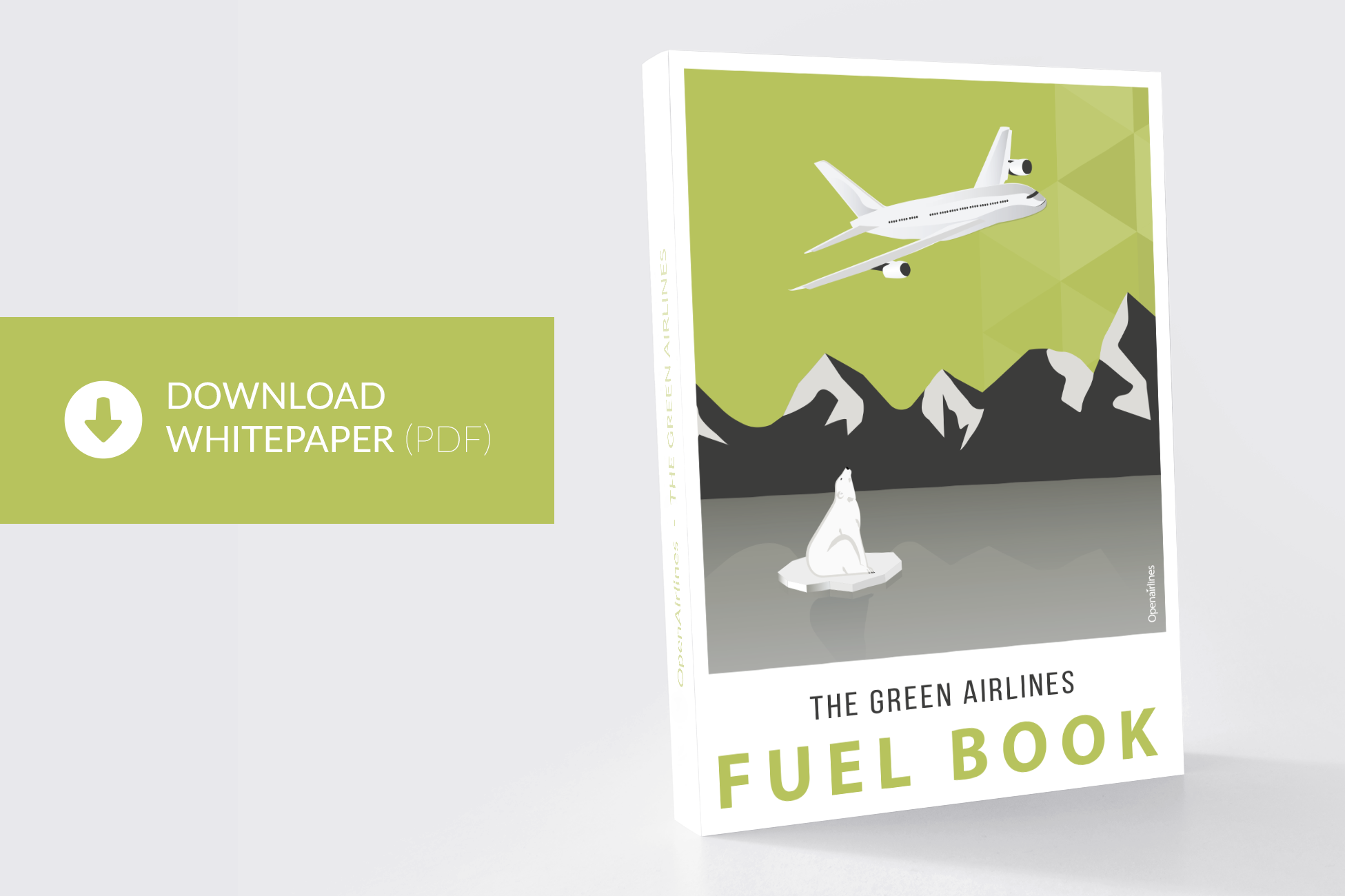 the green airlines fuel book